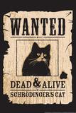Schrodinger's Cat Affiches par  Snorg