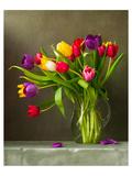 Colorful Tulips Still Life Kunstdrucke