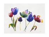 Rainbow Tulips 2 Art by Paulo Romero