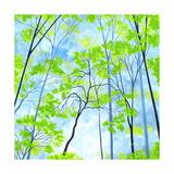 Codys Forest Premium Giclee-trykk av Herb Dickinson