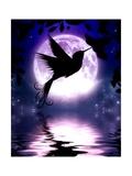 Moonlit Hummingbird Art by Julie Fain