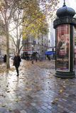 Paris St Michel Reproduction photographique par Charles Bowman