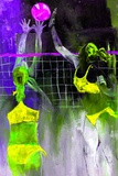 Playing Volley Poster by Pol Ledent