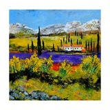 Provence 885120 Prints by Pol Ledent