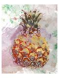 Ananas III Prints