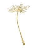 Dandelion 2 Golden White Art par Amy Brinkman