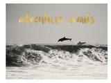 Dolphins Adventure Awaits Golden Affiches par Amy Brinkman
