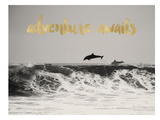 Dolphins Adventure Awaits Golden Láminas por Amy Brinkman