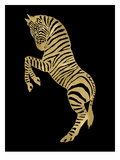 Zebra Golden Black Prints by Amy Brinkman
