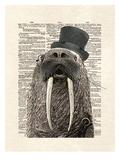 Walross Kunstdrucke von Matt Dinniman
