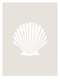 Beige White Shell Poster von  Jetty Printables