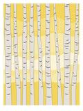 Yellow Birch Trees Posters av  Jetty Printables