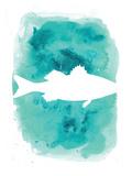 Watercolor Aqua Sea Bass Posters av  Jetty Printables
