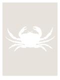 Beige White Crab Kunstdrucke von  Jetty Printables