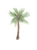 Watercolor Palm Tree Posters av  Jetty Printables