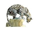 Spine (Arabian Leopard), 2015 Giclée-tryk af Mark Adlington