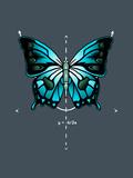 Symmetry Butterfly Fotografia por  Boots