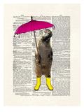 Rainy Day Otter Print by Matt Dinniman