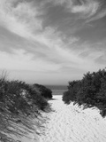 Lambert's Cove Beach, North Tisbury, Martha's Vineyard, Massachusetts, USA Fotografisk tryk af Walter Bibikow