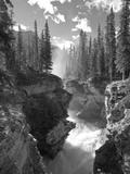 Athabasca Falls Waterfall, Jasper National Park, Alberta, Canada Fotografisk tryk af Michele Falzone