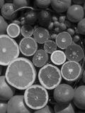 Citrus Fruits, Orange, Grapefruit, Lemon, Sliced in Half Showing Different Colours, Europe Fotografie-Druck von  Reinhard
