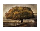 Autumnal Landscape Affiches par David Lorenz Winston