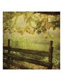 Autumn Overture Prints by Dawne Polis