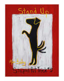 Stand Up - Stupid Pet Trick 5 Édition limitée par Ken Bailey