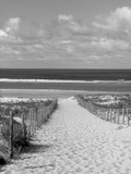 Cap Ferret, Bassin d'Arcachon, Gironde, Aquitaine, France Reproduction photographique par Doug Pearson