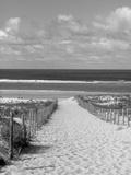 Cape Ferret, Basin d'Arcachon, Gironde, Aquitaine, Frankrike Fotoprint av Doug Pearson