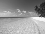 Tropical Island and Beach, Maldives, Indian Ocean, Asia Photographic Print by Sakis Papadopoulos