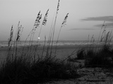 Sunset, Gulf Coast, Longboat Key, Anna Maria Island, Beach, Florida, USA Photographic Print by Fraser Hall