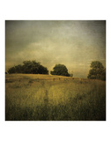 Another Place 2 Prints by Crina Prida