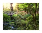 Awakening Garden I Art by Dennis Frates