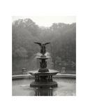 Bethesda Fountain Affiches par Chris Bliss
