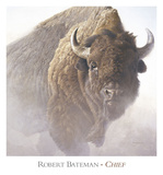 Chief (detail) Kunst af Robert Bateman