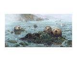 Carmel Coast Otters Poster von John Dawson