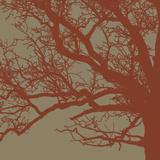 Cinnamon Tree III Plakater af Erin Clark
