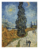 Country Road in Provence by Night, c. 1890 Poster von Vincent van Gogh