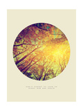 Inspirational Circle Design - Autumn Trees: Don't Forget to Look Up Every Now and Again Stampa giclée di Michal Bednarek
