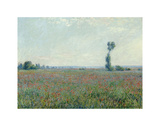 Poppy Field, 1881 Posters av Claude Monet