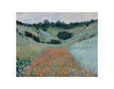 Poppy Field in a Hollow Near Giverny, 1885 Posters av Claude Monet