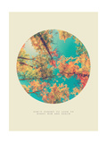 Inspirational Circle Design - Autumn Trees: Don't Forget to Look Up Every Now and Again Giclée-Druck von SHS Photography