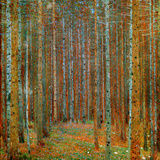 Tannenwald (Pine Forest), c.1902 ポスター : グスタフ・クリムト