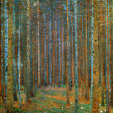 Tannenwald (Pine Forest), c.1902 高画質プリント : グスタフ・クリムト
