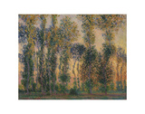 Poplars at Giverny, Sunrise, 1888 Affiches par Claude Monet