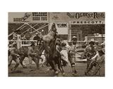 Rodeo Daze Prints by Barry Hart