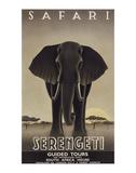 Serengeti Poster von Steve Forney