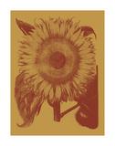 Sunflower 15 Art par  Botanical Series
