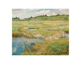 The Concord Meadow, ca. 1891 Posters by Childe Hassam